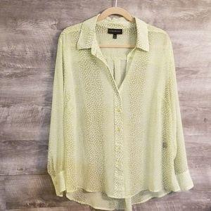 🌾Lane Bryant sheer blouse